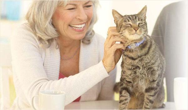 FREE-Initial-Pet-Health-Exam