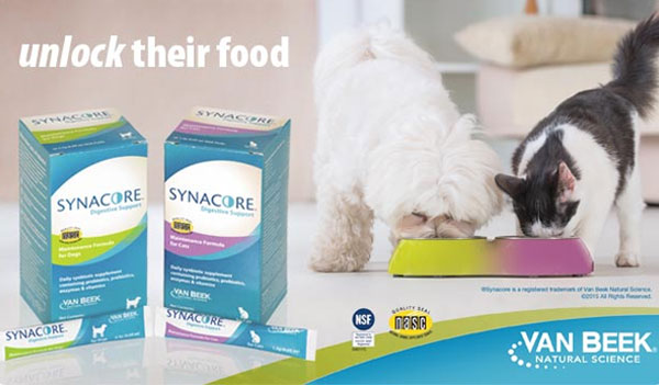 free-synacore-probiotic-sample